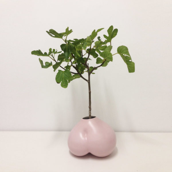 Gluteus pink with fig