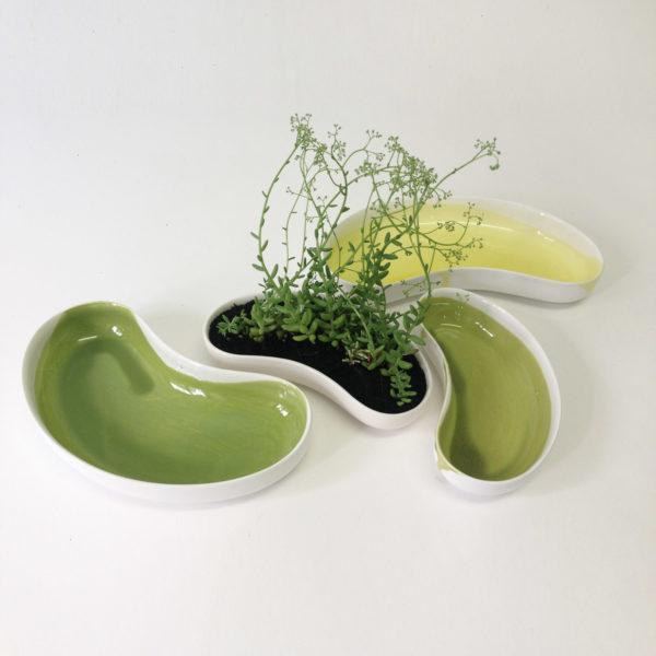 Kidney Dish colred + plants